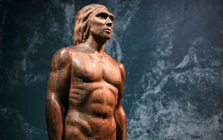 I nostri antenati avevano un cervello...
