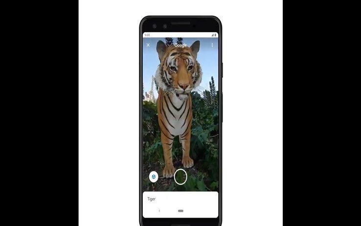 Google, animali in 3D: ecco come osse...